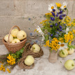 Still life bouquet of whild flowers and white transparent apples — Stock Photo