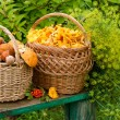 Stock Photo: Two baskets with mushrooms on bench