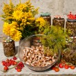 Still life with yellow flowers and raw and pickled mushroms honey agaric — Stock Photo