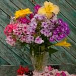 Phlox and hemirocallis bouquet still life — Stock Photo
