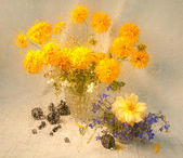 Still life of yellow flowers through wet glass on a rain — Stock Photo
