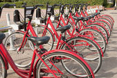 Bicycle parking - row of bicycles in the campus — Стоковое фото