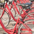 Bicycle parking - row of bicycles in the campus — Stock Photo #32423839
