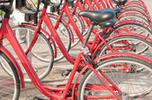 Bicycle parking - row of bicycles in the campus — Stock Photo