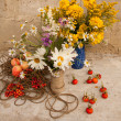 Still life with two wild flowers bouquets — Stock Photo