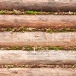 Wooden logs wall with mosses background — Stock Photo