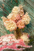 Wet hydrangea bouquet still life — Foto Stock