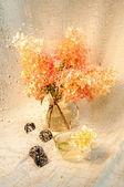Still life with hydrangea bouquet throw wet glass — Stock Photo