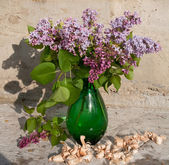 Still life bouquet with lilac — Stock Photo