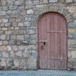 Old architectural details - arched door — Stock Photo #48481255
