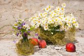 Still life bouquet of chamomiles — Foto de Stock