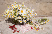 Still life bouquet with chamomiles — Stock fotografie