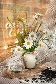 Chamomilie flowers bouquet on the window sill — Stockfoto
