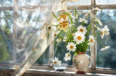 Chamomilie flowers bouquet on the window sill — Stock Photo