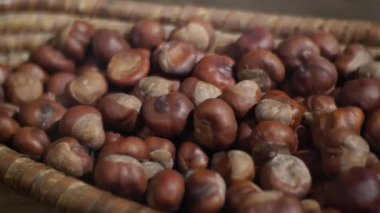 Ripe chestnuts — Stock Video
