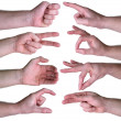 Stock Photo: Set of gestures hands over white background
