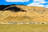 Bela paisagem — Fotografia Stock