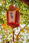 Lanterna de ásia — Fotografia Stock