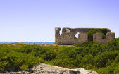 Wild port in Salento — Foto Stock