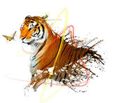 Tiger splash with butterfly and beautiful effect — Stock Photo