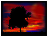 Tree in the evening. — Stock Photo