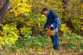 Man gathering mushrooms in the woods in a sunny autumn day — Stock Photo