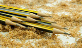 Wooden pencil with shavings — Stock Photo