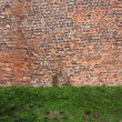 Old rugged brick wall with green grass — Stock Photo #28589161