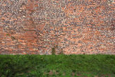 Old rugged brick wall with green grass — Stock Photo