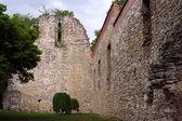 13. století zřícenina na markétině ostrově, budapešť, maďarsko. — Stock fotografie
