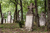 Weathered tombstones in an old cemetery — Stock Photo