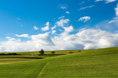 German landscape — Stockfoto