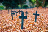 Autumn cemetery crosses — Stock Photo