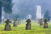 Cross-shaped tombstones in an old cemetery — ストック写真