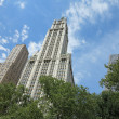 Woolworth Building seen from City Hall Park in New York — Stock Photo