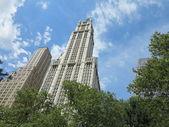 Woolworth gebouw gezien uit de city hall park in new york — Stockfoto