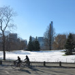 Stock Photo: Bicycling thru Central Park after sudden November Winter Storm in 2013