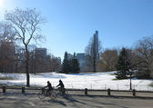 Bicycling thru Central Park after a sudden November Winter Storm in 2013 — Stock Photo