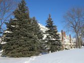 Hoffman Estates Illinois Town Homes with Snow along Moon Lake Boulevard with clear blue sky after storm — Stock Photo