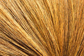 broom of dry grass texture backgrounds  — Stock Photo