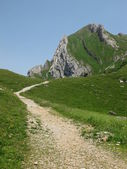 Foot-path in the mountains — Stock Photo
