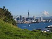 Auckland — Stock Photo