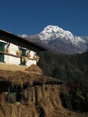 Annapurna South and drying corn on a facade — Stock Photo
