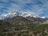 Annapurna Range and forest — Stock Photo