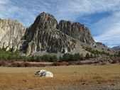 Resting yak and limestone formation, Nepal — Stock Photo