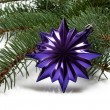 Постер, плакат: Covered with branch of a Christmas tree and deep purple star and