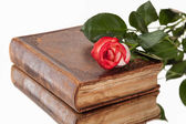 Old book and flower on white background — Stock Photo