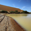 Stock Photo: Water in Sossusvlei