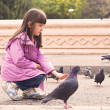 Small caucasigirl feeding pigeons — Stock Photo #35040399