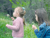 Girls blows on dandelion — Stock Photo